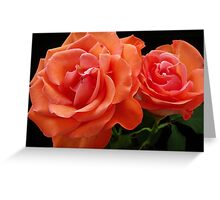 Double Rose Greeting Card