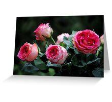 Paper roses Greeting Card