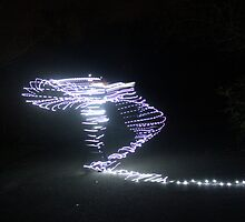 Fairy Lights by missbrodrick
