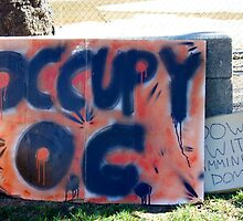 Occupy Orange County by Vaillettephoto