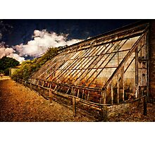 Old Cold Frames Photographic Print