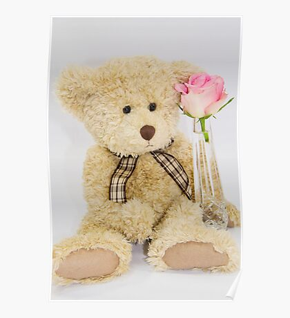 Teddy Bear With A Pink Rose Poster