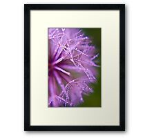 I was up early today :D Framed Print