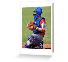 Baseball Backstop Greeting Card
