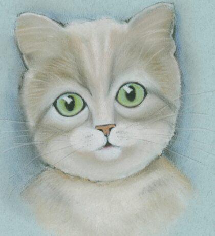 Cute cat portrait. Sticker