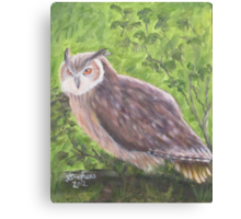 Owl...Impressionistically Speaking Canvas Print