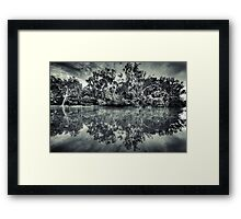 Black and White Charlie Framed Print