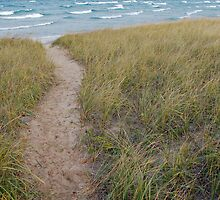 Path to Lake Michigan by North22Gallery