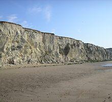 grey rock by shireengol