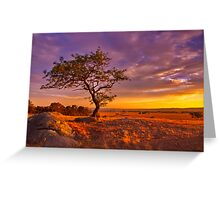 """""""Day's End At The Rocks"""" Greeting Card"""