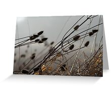 Strong Enough to Bend Greeting Card