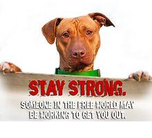 HeARTs Speak Stay Strong Pit Bull by HeARTsSpeak