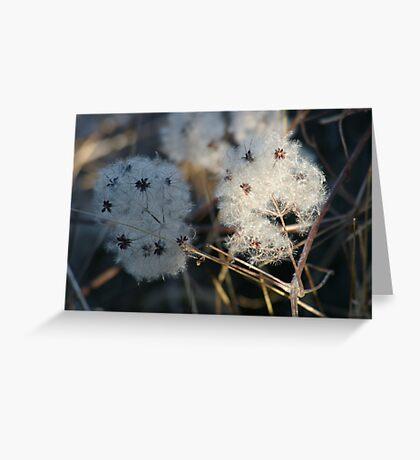 Fluff Greeting Card
