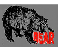 BEAR CUB CLUB Photographic Print