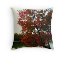 Beautiful Tree Growing out of the North Cove, Wayne NJ Throw Pillow