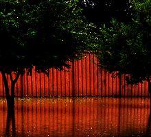 Red Red by Elizabeth McPhee