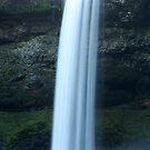 South Falls *Feb 4th 2012* by Chappy