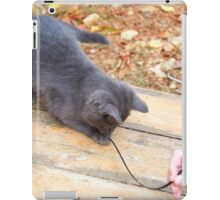 Homeless kitten playing with a stick iPad Case/Skin