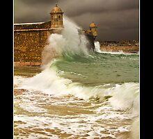 Forte da Ponta da Bandeira by Guy Davies