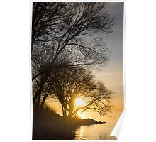 Early Gold Through the Willow Branches - A Sunrise on the Shore of Lake Ontario Poster
