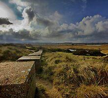 Dunwich Coast Suffolk by Darren Burroughs