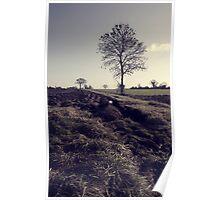 Norfolk Farming Poster