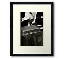 Bear False Witness (Perjury) Framed Print