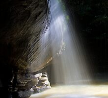Serenity Falls _ Buderim QLD by Steve Bass