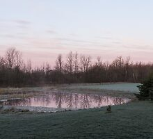 Pink Pond - A Peaceful Daybreak On The Farm by Georgia Mizuleva