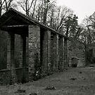 The Howk, Caldbeck, Cumbria. by Lou Wilson