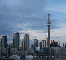 Up Close And Personal - Toronto's Skyline From The Island Airport by Georgia Mizuleva