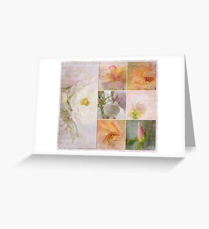 storyboard . . . . roses Greeting Card