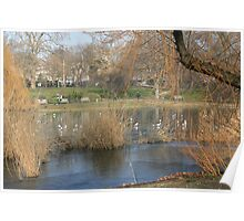 February in St James Park  London Poster