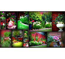 Walk in my garden Photographic Print
