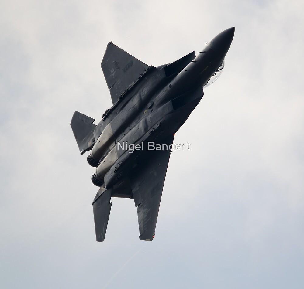 USAF F-15E Strike Eagle by Nigel Bangert
