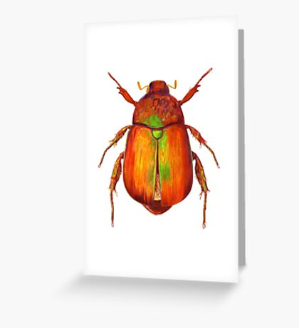 Iridescent Dune Chafer Beetle Greeting Card