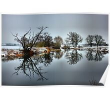 Winter wonder land reflections Poster