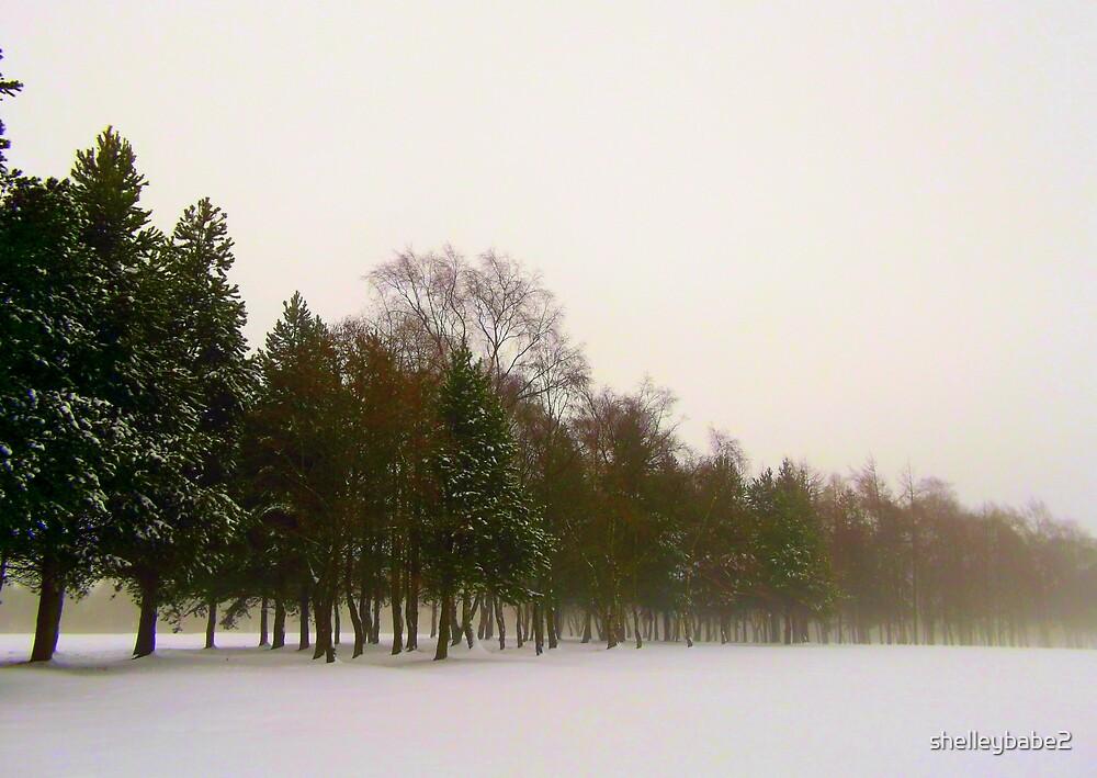 Winter Scene by shelleybabe2