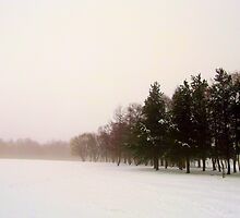 Winter Scenery by shelleybabe2
