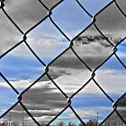 Fenced In by Casey Peel
