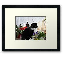 Favourite Place Framed Print