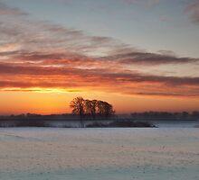 Winter Sunrise by mountainsandsky