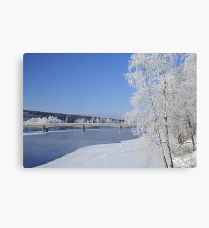 My coldest day this year Canvas Print
