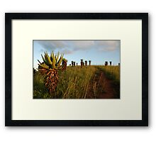 marching up the hill Framed Print