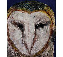 Barn Owl UK Wildlife Home Decor Photographic Print