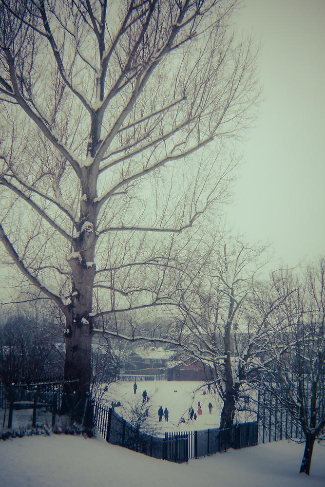 Bethune Park, Friern Barnet. by Richard Pitman