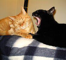Bad Breath? by Erinn822