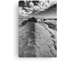 Dune Walk 1 Canvas Print