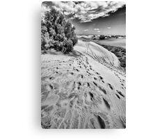 Dune Walk 2 Canvas Print