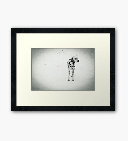 Perdita? Framed Print